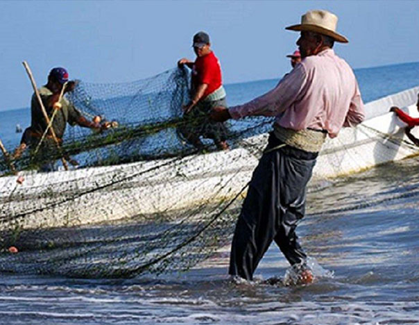Pide José Luis Pérpuli que se liberen permisos de pesca en BCS - CULCO BCS